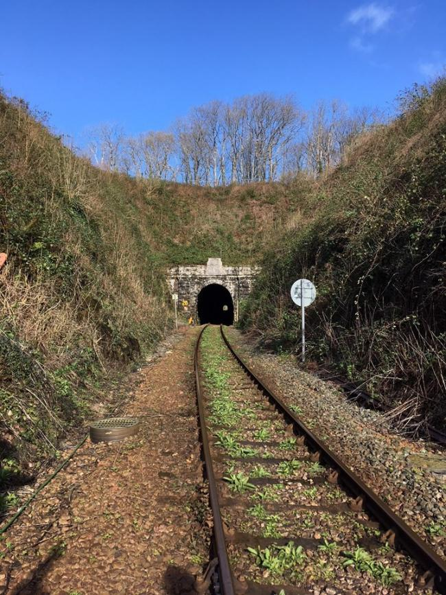 Improvements are being planned at Pembroke Tunnel. PICTURE: Network Rail .