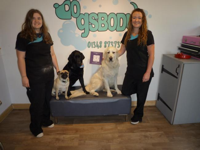 Dogsbody Grooming in Goodwick has been shortlisted for Animal Star Awards