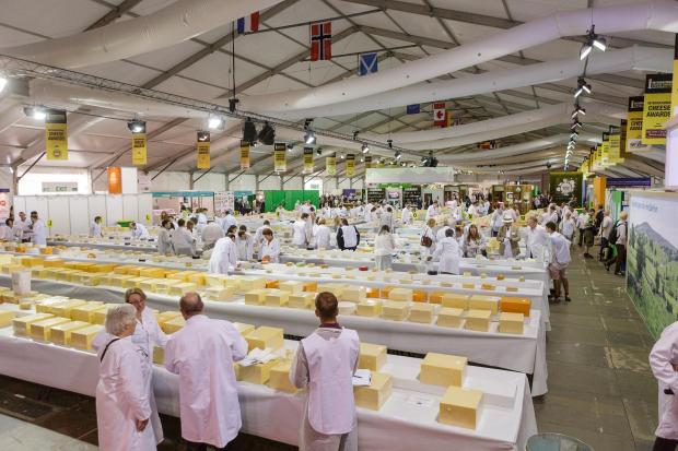 Dairy farmers supplying First Milk's Haverfordwest Creamery were awarded the 'Best Welsh Cheese' trophy at this year's International Cheese Awards in Nantwich.  (9155546)
