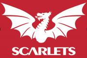 HEADING NORTH: The Scarlets take on Edinburgh at Murrayfield on Friday evening.