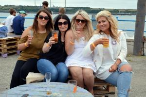 Milford Mercury: Cheers! Pictures from Milford Haven Round Table Beer Festival 2016.