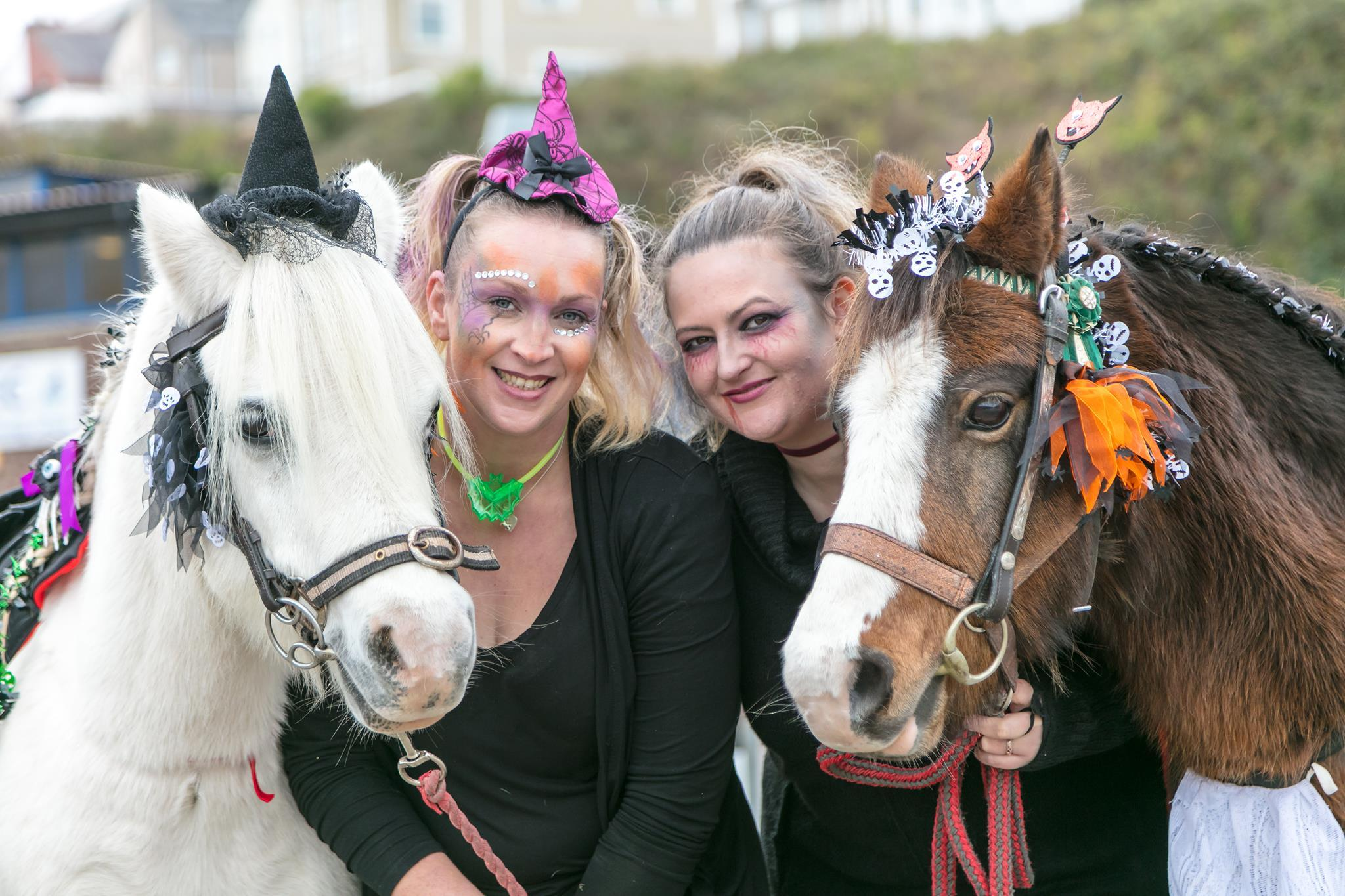 Halloween horses and creepy crafts in Milford Haven.